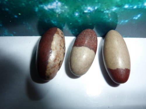 Lot de 3 Shiva lingam pierre de riviere